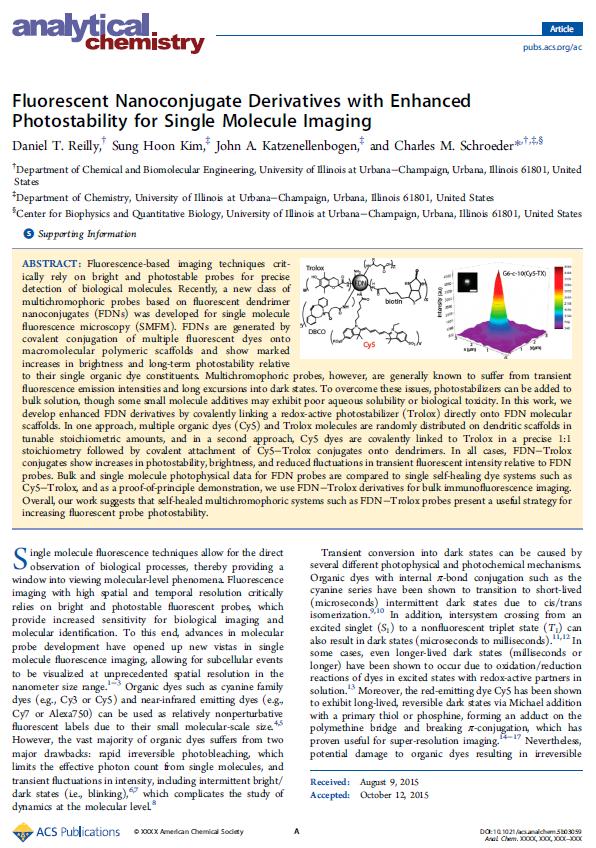 Fluorescent Nanoconjugate Derivatives with Enhanced Photostability for Single Molecule Imaging