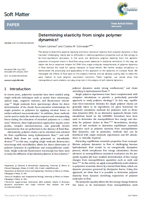 Determining Elasticity from Single Polymer Dynamics