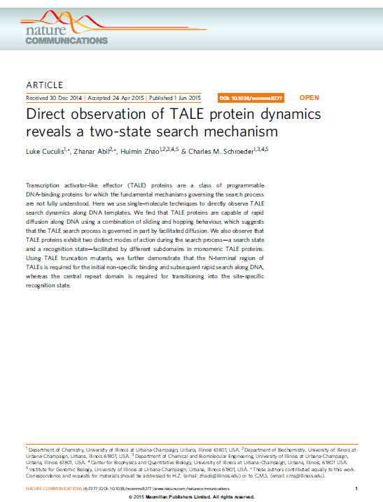 Direct Observation of TALE Protein Dynamics Reveals a Two-State Search Mechanism